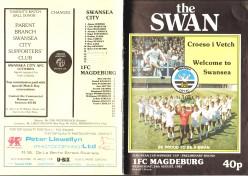 Swans100_00354